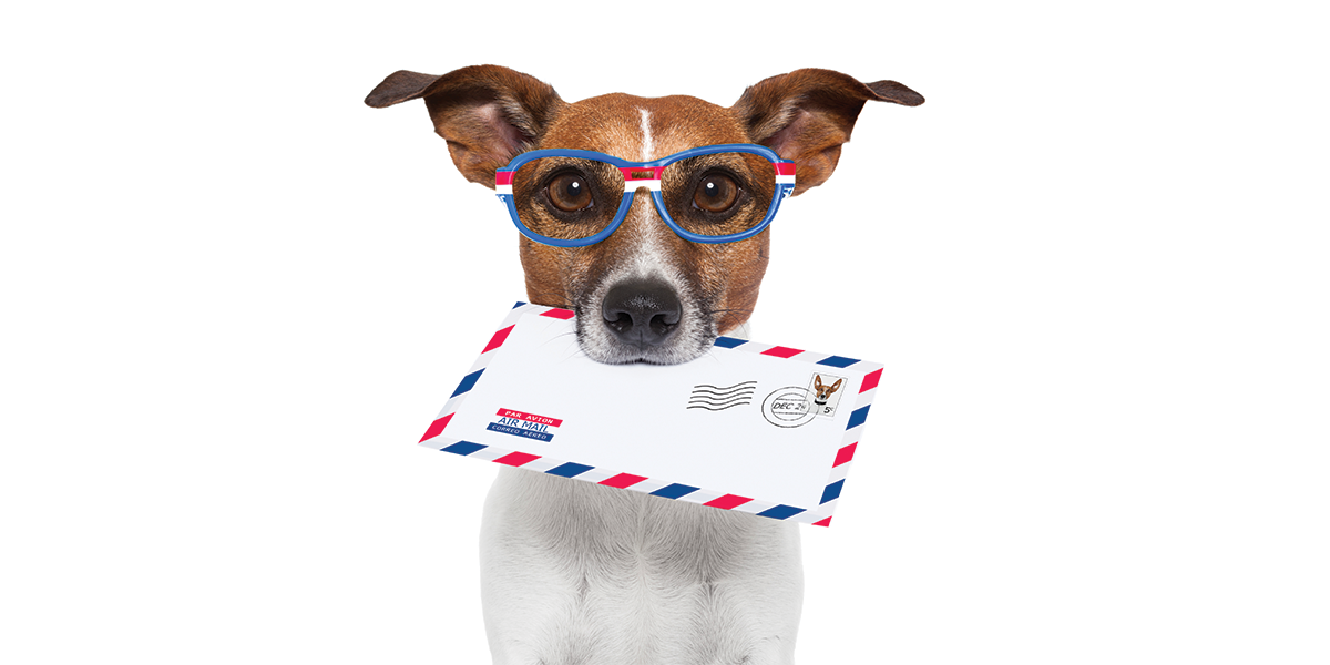 Mail forward service for small business growth